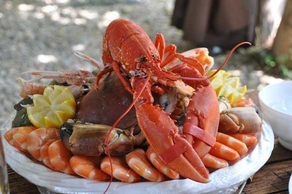 Seafood Toxins and Link to Alzheimer's