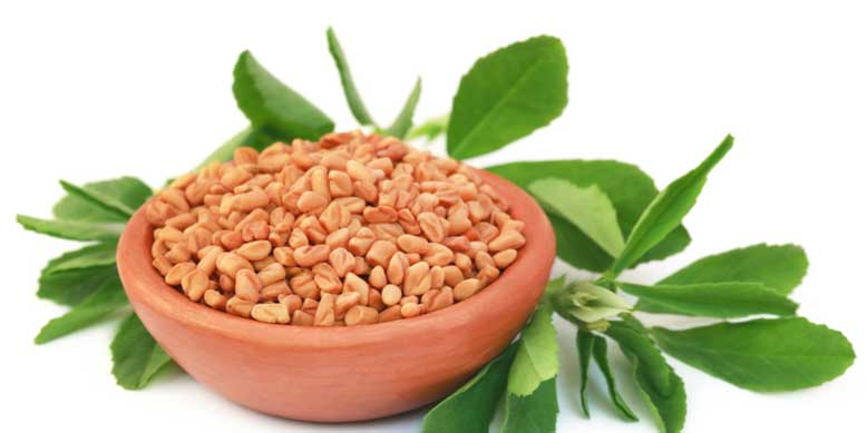 Fenugreek and Arthritis
