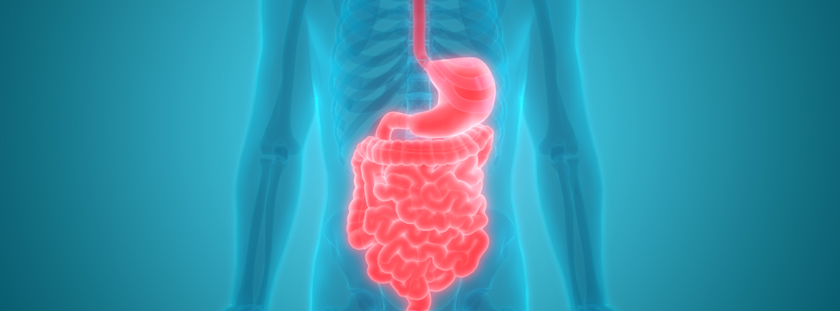 Aging and Top 3 Digestive Problems and What You Can Do About It