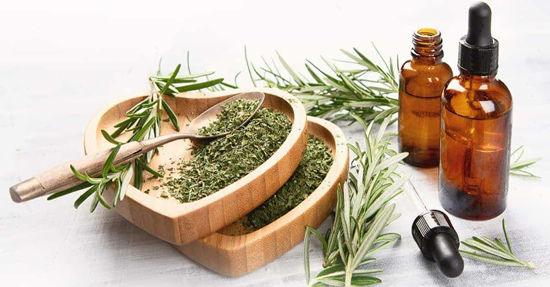 Rosemary Helps with Healthy Aging